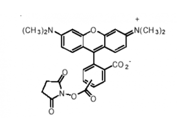 Fig. 5(6)-TAMRA, succinimidyl ester, mixed isomers structure formula