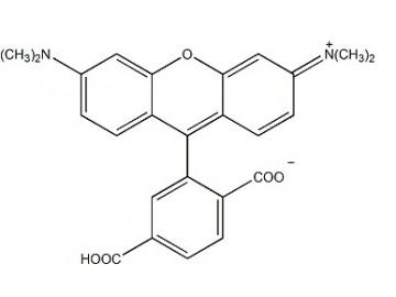 Fig. 6-TAMRA structure formula