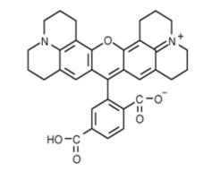 Fig. 6-ROX structure formula