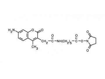 Fig. AMCA-X, succinimidyl ester structure formula