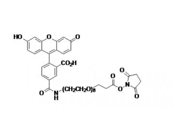Fig. 5-FAM-PEO8, succinimidyl ester structure formula