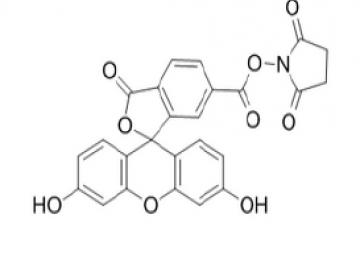 Fig. 6-FAM, succinimidyl ester structure formula