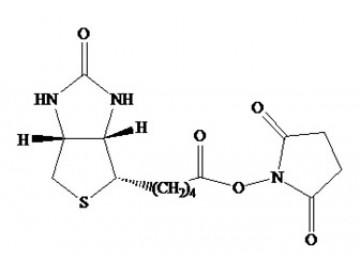 Fig. Biotin SE structure formula