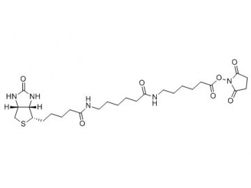 Fig. Biotin-XX, SE structure formula