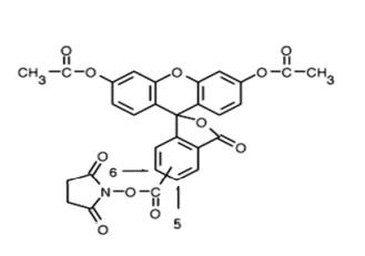 Fig. 5(6)-CFDA, SE structure formula
