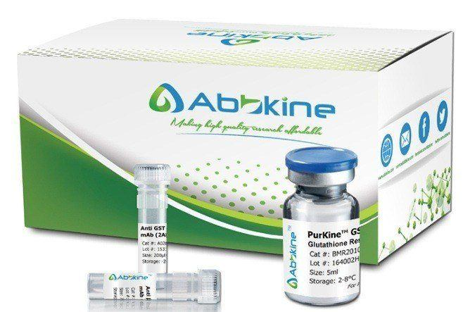 Fig.1. Abbkine PurKine™ is series of unique purification portfolio from settled resin, prepacked spin columns and full kits for your most types of sample purification and preparation.
