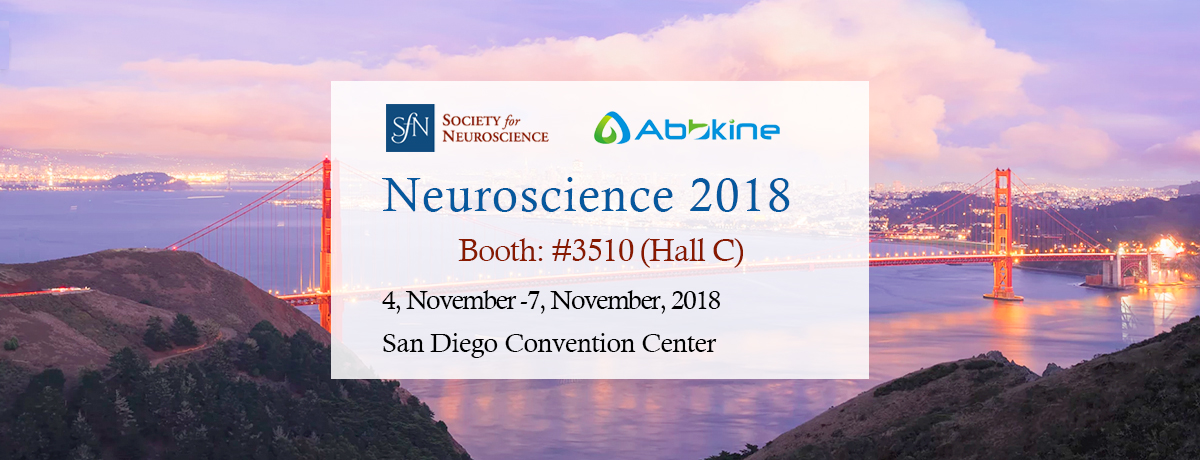 Abbkine invites you to visit us at Neuroscience 2018 in San Diego, CA