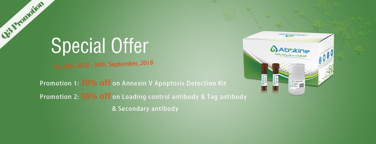 30% off on Abbkine Antibodies and Annexin V Apoptosis Detection Kits