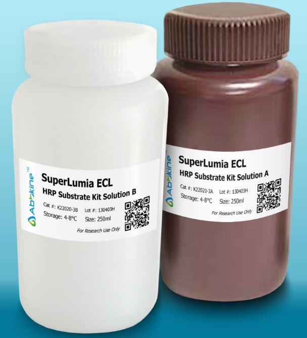The SuperLumia ECL Plus HRP Substrate Kit is another breakthrough recovery from Abbkine Scientific