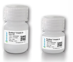 PurKine™ Antibody Purification Protein G Kit
