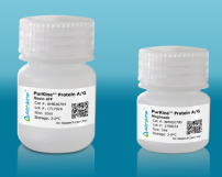 PurKine™ Protein AG Resin 4FF