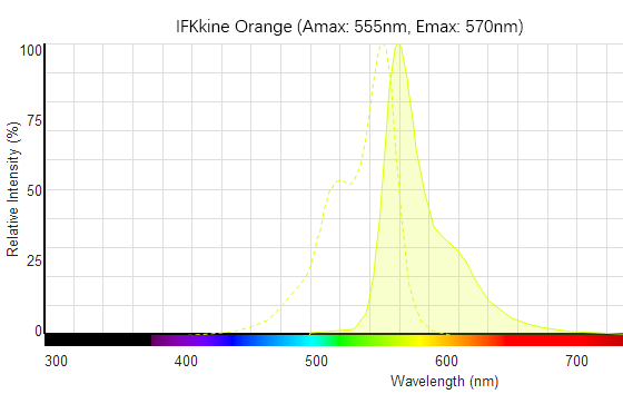 IFKine™ Orange Donkey Anti-Mouse IgG becomes the new addition to the Abbkine family