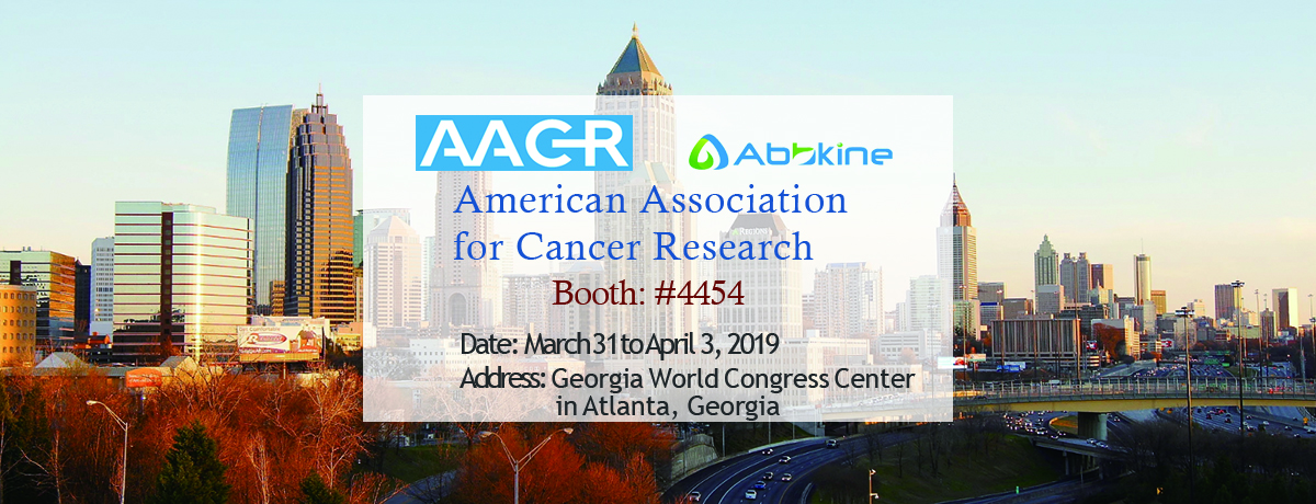 Abbkine invites you to visit AACR 2019, Atlanta, Georgia!