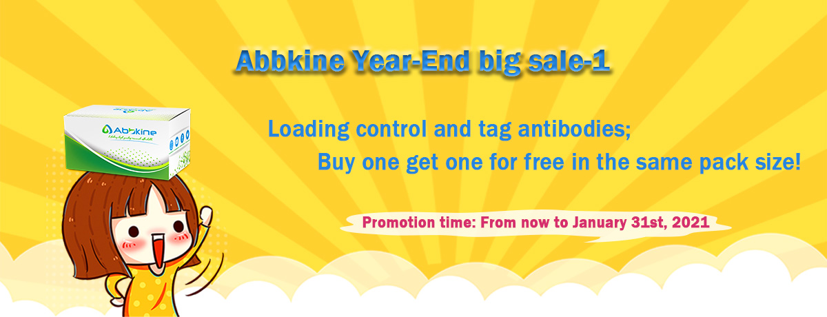 Abbkine Year-End promotion-1
